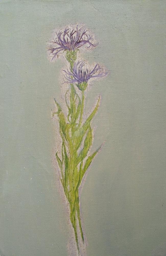 Zahra, 2011 Oil on Canvas