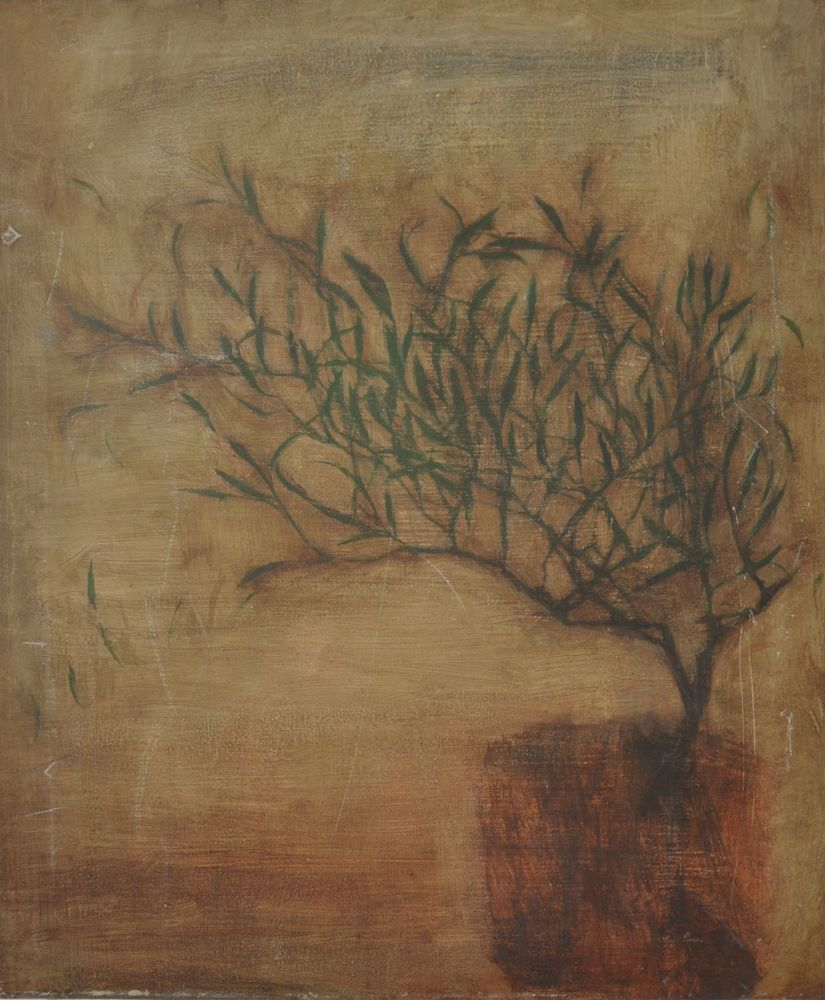 Olive Tree For Ali, 2003 Oil on Canvas