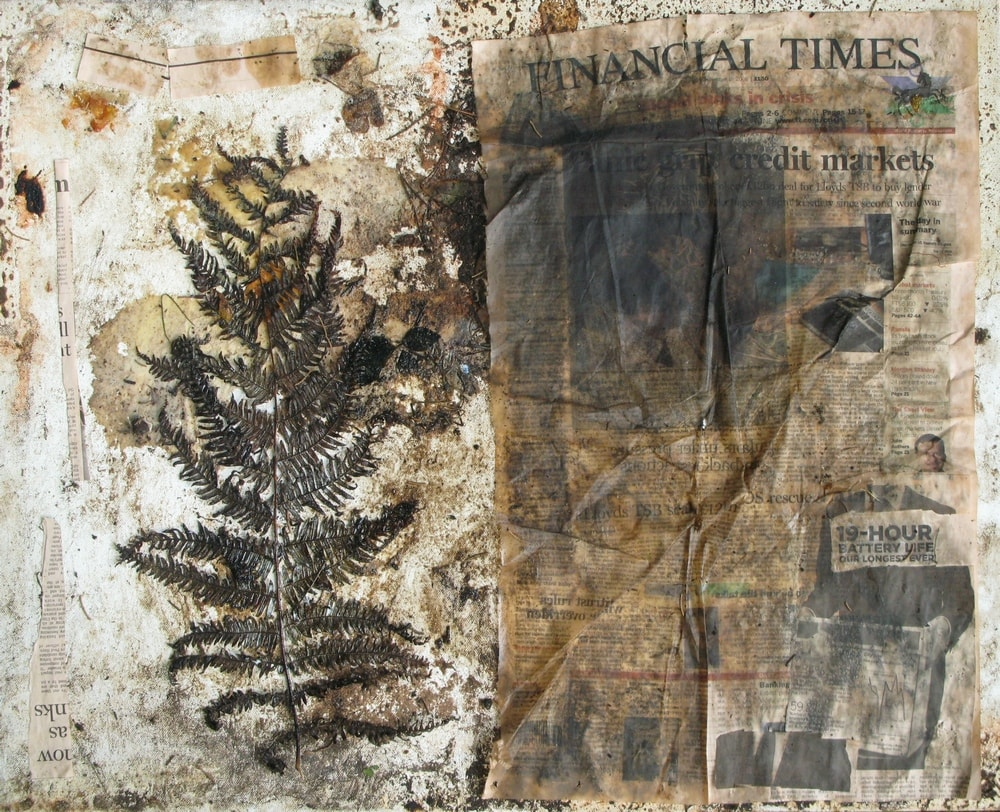 The Fern, The FT and The Crisis (Stage 1 Of 2), 2008 Photograph Of Collage on Canvas on Canvas 50 X 70 Cm
